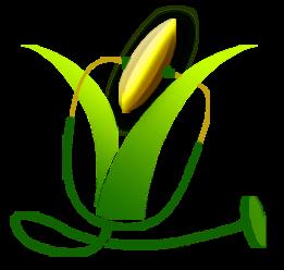 Paddy Plant Logo | www.pixshark.com - Images Galleries ...