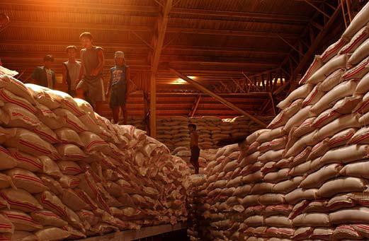 Grain storage - IRRI Rice Knowledge Bank