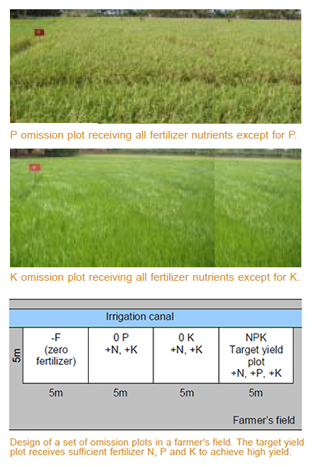 factsheet-nutrient-omission-plots
