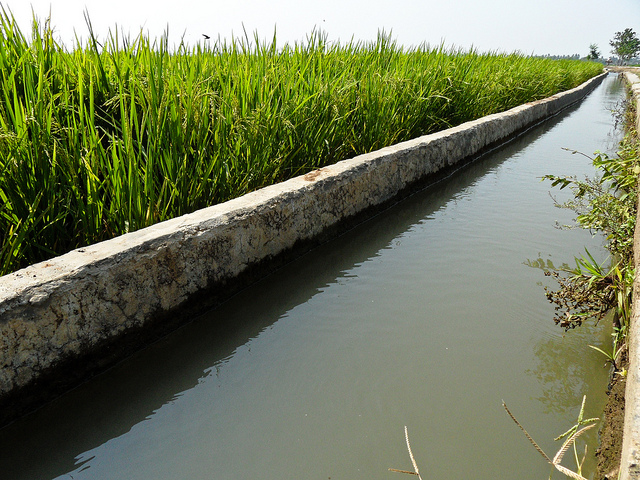 watermgt-field-channel