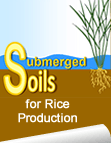 Submerged soils for rice production