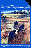 A Farmer's Primer on Growing Rice (Lao)