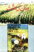 A Farmer's Primer on Growing Rice (Pakistan)