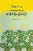 A farmer's primer on growing soybean on riceland (Myanmar)