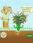 Rice Crop Manager Philippines