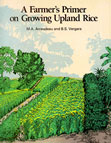A Farmer's Primer on Growing Upland Rice